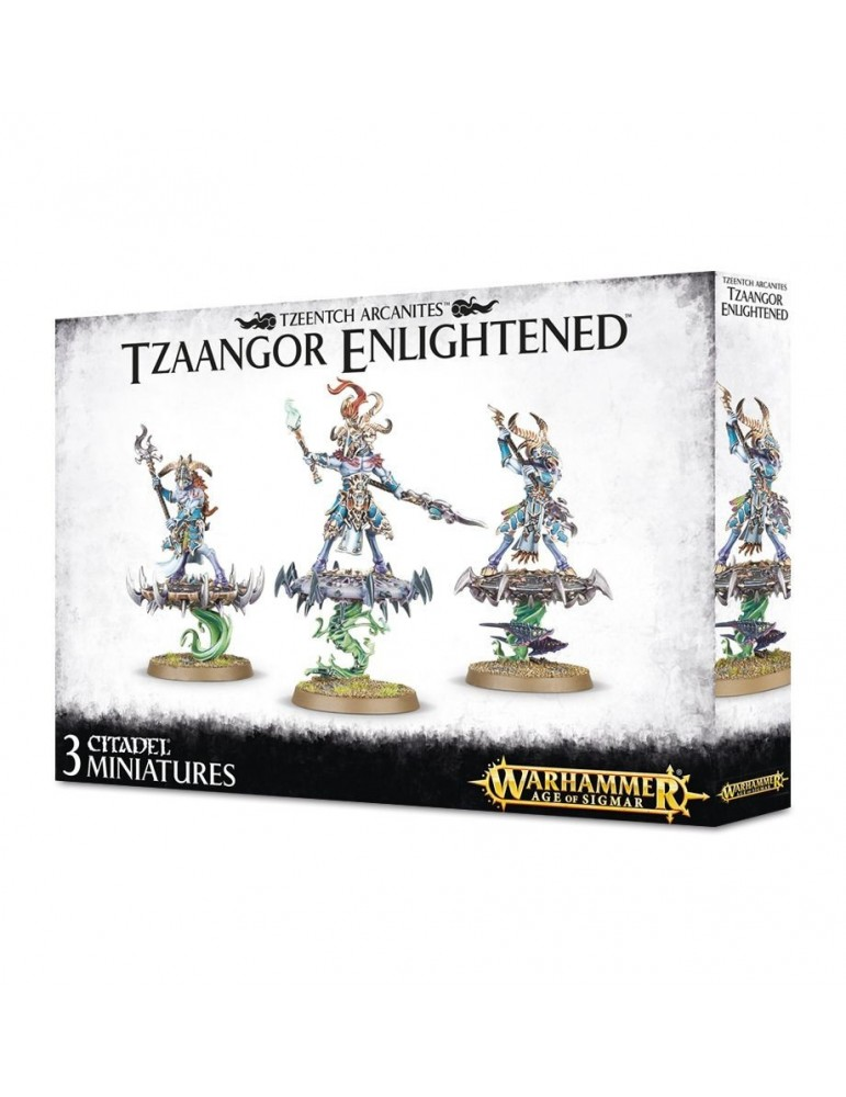 Warhammer Age of Sigmar: Tzaangor Enlightened