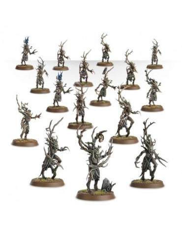 Sylvaneth Dryads