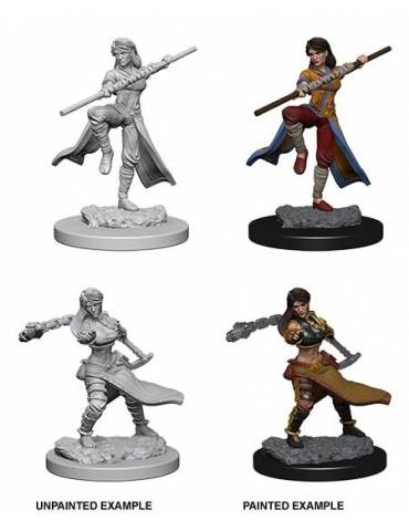 D&D Nolzur's Marvelous Miniatures: Human Female Monk (2 Miniaturas)