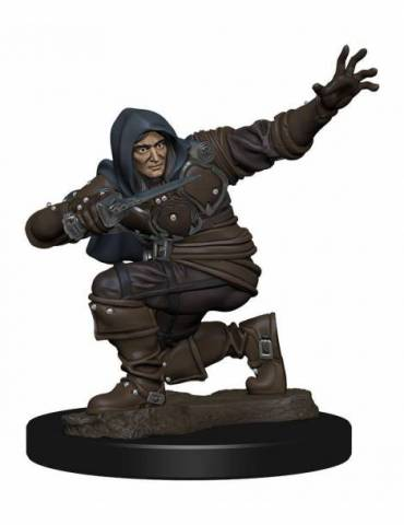 Figura Pathfinder Battles Miniatura Premium pre pintado Human Rogue Male
