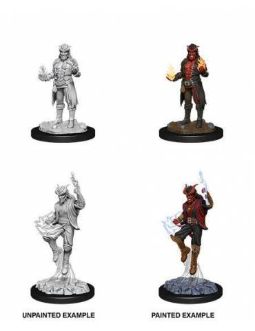D&D Nolzur's Marvelous Miniatures: Tiefling Sorcerer Male
