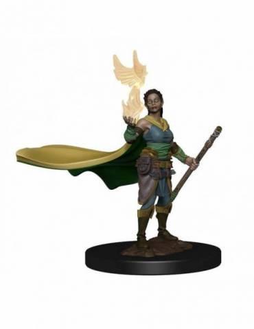 D&D Icons of the Realms: Elf Druid Female Premium