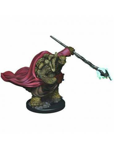 D&D Icons of the Realms: Male Tortle Monk