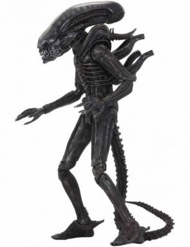 Figura Scale Action Figure Alien 40 Aniversario Serie 3: Xenomorph 18 cm