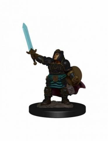 D&D Icons of the Realms: Dwarf Paladin Female