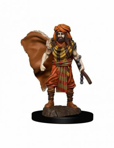 D&D Icons of the Realms: Human Druid Male