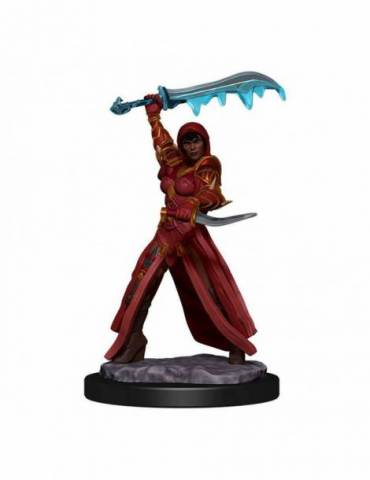 D&D Icons of the Realms: Human Rouge Female