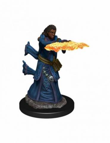 D&D Icons of the Realms: Human Wizard Female