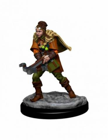D&D Icons of the Realms: Human Ranger Female