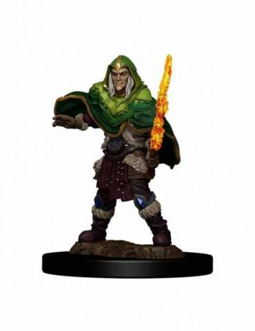 D&D Icons of the Realms: Elf Fighter Male
