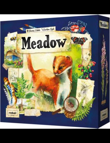 Meadow (Inglés)