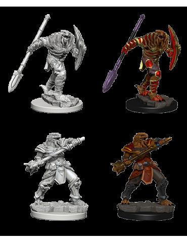 D&D Nolzur´s Dragonborn Male Fighter sp