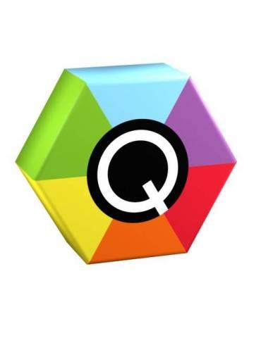 Q-Memory