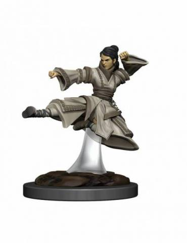 D&D Icons of the Realms Premium Figures: Human Monk Female